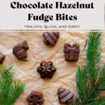 Chocolate Hazelnut Fudge Bites laid out on parchment paper, with fir twigs around the bites.