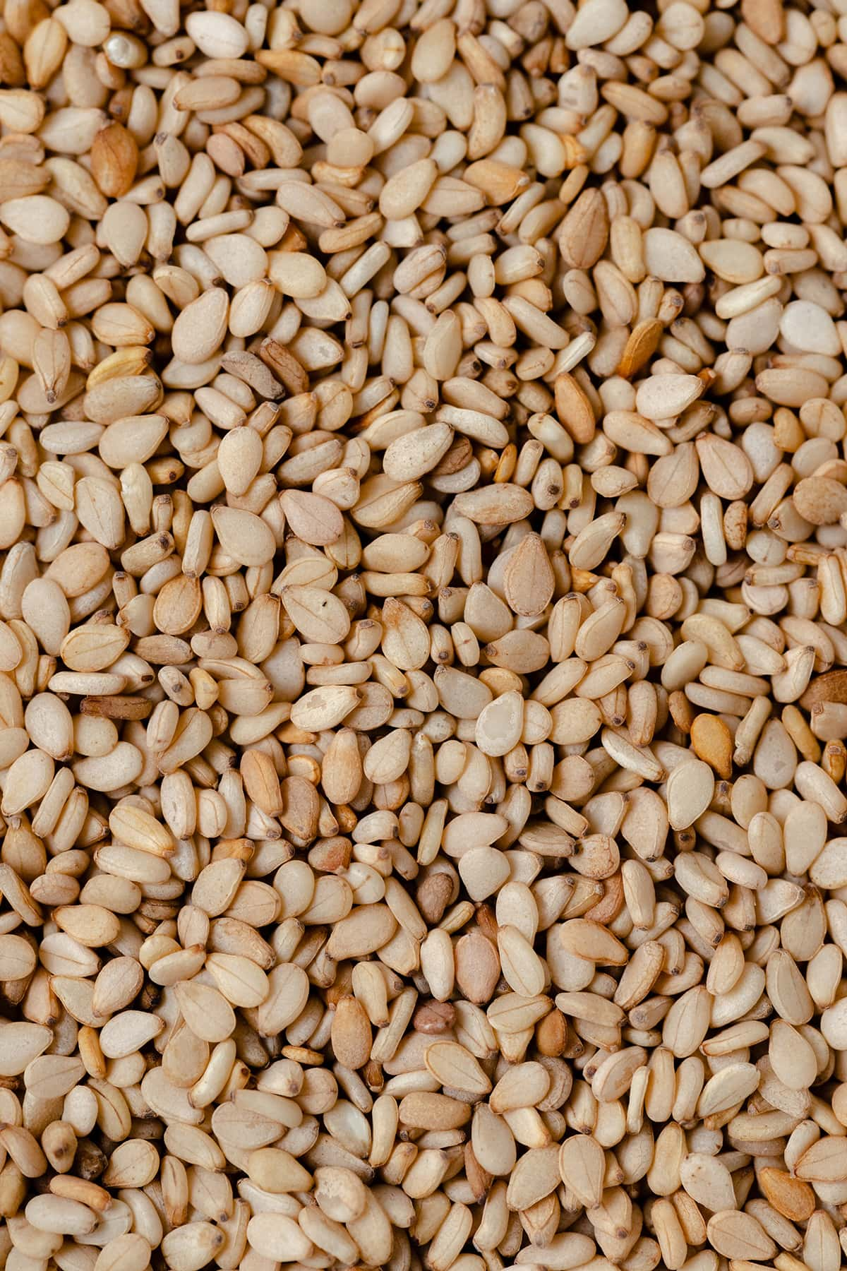 A macro shot of brown sesame seeds