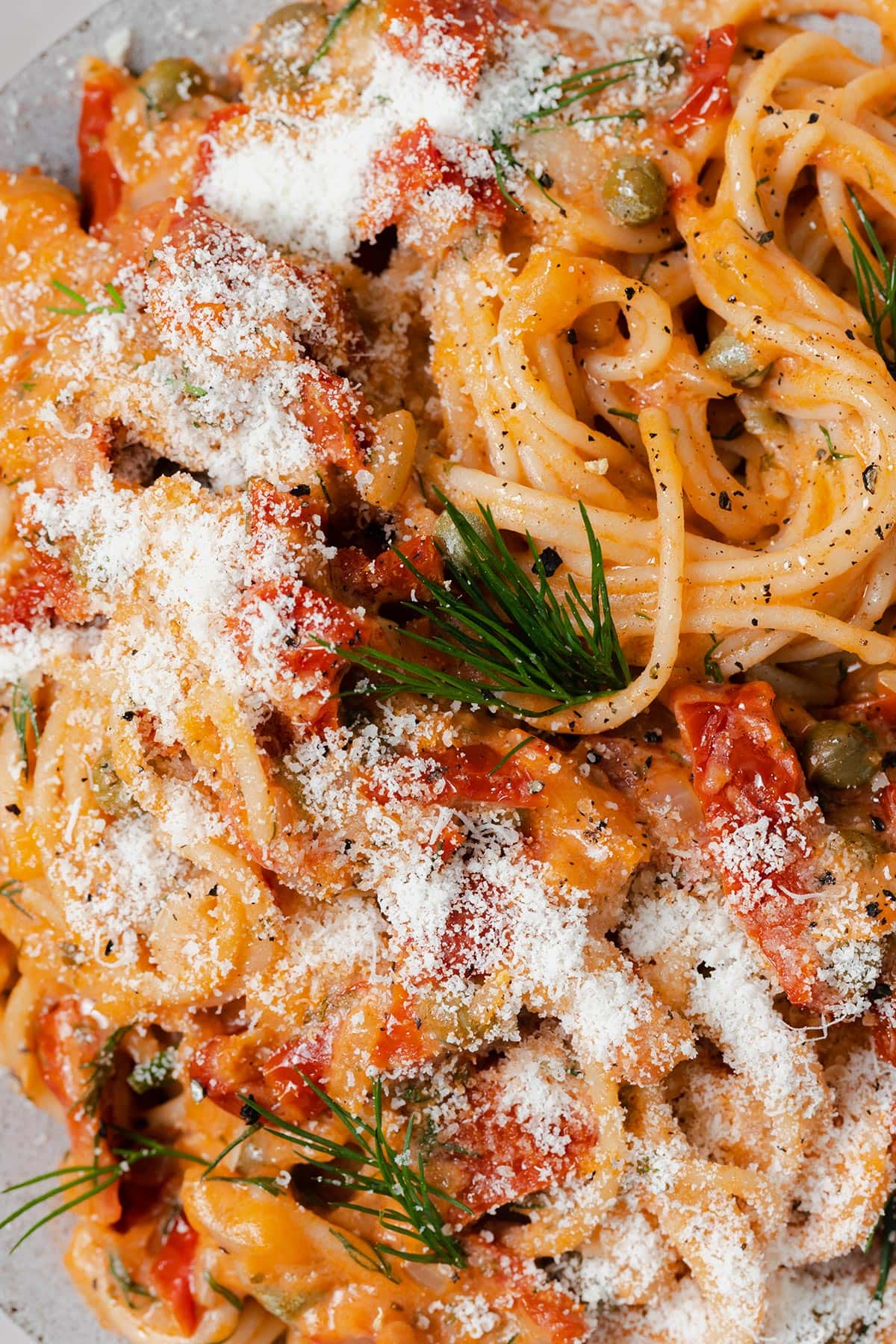 A close up photo of Creamy Sun-Dried Tomato Pasta with Capers and Dill and pecorino cheese.